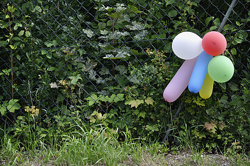 Germany, Bavaria, Colourful balloons hanging on wire fence - AXF000106