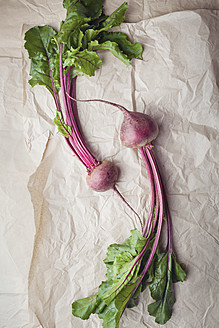 Beetroots on parchment paper - ECF000024