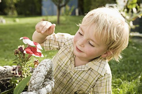 Germany, Bavaria, Boy sniffing flower, smiling - RNF000981