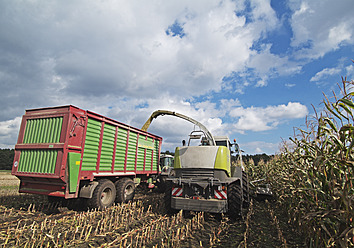 Germany, Corn harvesting with agriculture vehicles - WBF001294