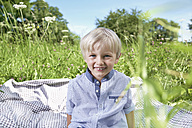 Germany, Cologne, Boy sitting on blanket in meadow, smiling, portrait - PDYF000003