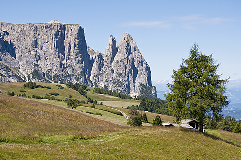 Italy, Alpine meadow towards Schlern and Santner Spitze at South Tyrol - UMF000425
