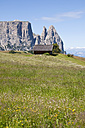 Italy, Alpine meadow towards Schlern and Santner Spitze at South Tyrol - UMF000424