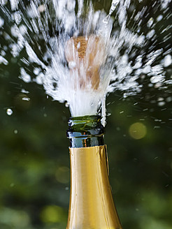 Opened champagne bottle with flying cork - EJWF000094