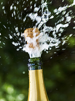 Opened champagne bottle with flying cork - EJWF000101