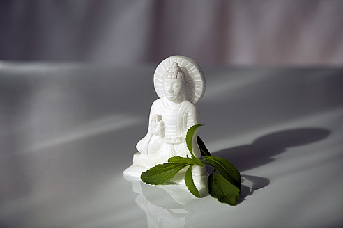 Germany, Munich, Buddha statue with stevia - KRF000019