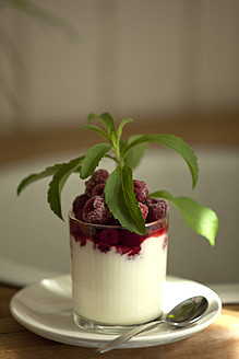 Glass of cream with raspberry and stevia, close up - KRF000022