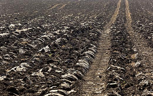 Austria, Upper Austria, Leonding, View of plowed field - EJWF000151