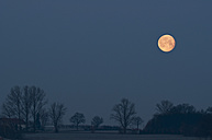 Germany, Bavaria, Full moon in morning - UMF000459