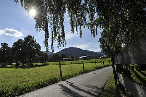 Germany, View of pathway - FDF000001