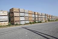 Spain, Catalonia, Wooden boxes of apple plantation on street - JMF000230