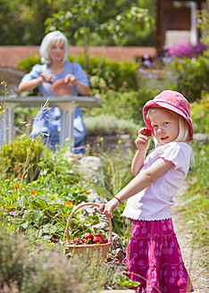 Germany, Bavaria, Girl picking starwberries in garden, mature woman in background - HSIYF000121