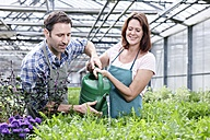 Germany, Bavaria, Munich, Mature man and woman watering rocket plant in greenhouse - RREF000008