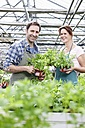 Germany, Bavaria, Munich, Mature man and woman in greenhouse with rocket plant, smiling, portrait - RREF000084
