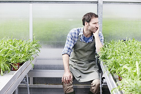 Germany, Bavaria, Munich, Mature man in greenhouse between rocket plant - RREF000015