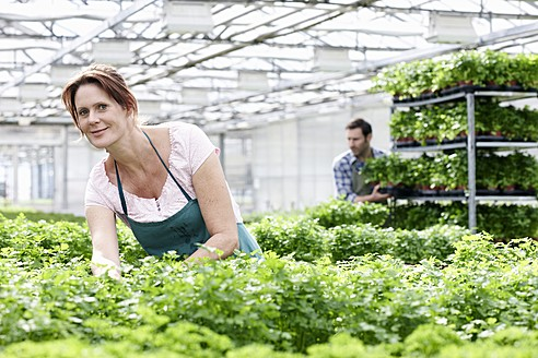 Germany, Bavaria, Munich, Mature woman in greenhouse between parsley plants, man standing in background - RREF000018