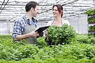 Germany, Bavaria, Munich, Mature man and woman with clip board in greenhouse - RREF000020