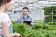 Germany, Bavaria, Munich, Mature man and woman with clip board in greenhouse - RREF000024