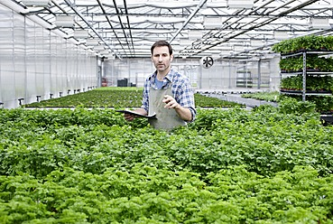 Germany, Bavaria, Munich, Mature man in greenhouse between parlsey plants with clip board - RREF000027