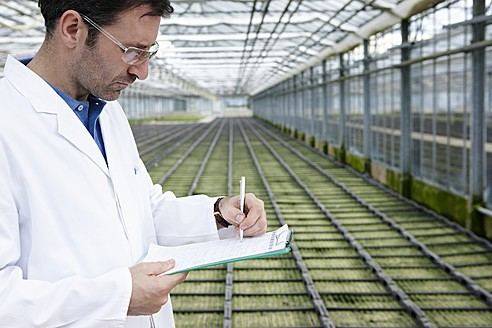 Germany, Bavaria, Munich, Scientist in greenhouse examining bed with seedlings - RREF000052