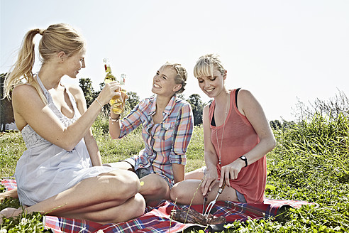 Germany, Cologne, Young women drinking beer in picnic - RHYF000223