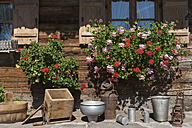 Germany, Bavaria, Geranium and househols articles on terrace of farmhouse - TCF002881