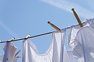 Germany, Bavaria, Drying clothes on washing line - TCF002887