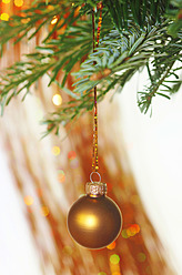 Germany, Christmas bauble hanging to tree, close up - JTF000175