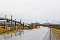 USA, Alaska, View of Trans Alaska Pipeline System along Dalton Highway in autumn - FO004381