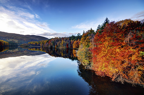 UK, Scotland, View of Loch Faskally in autumn - SMAF000019