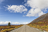 USA, Alaska, View of Denali Highway in autumn - FOF004405
