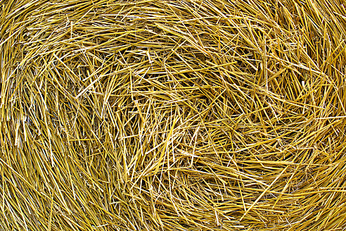 Germany, Hesse, Close up of straw - MHF000019