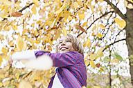 Germany, Leipzig, Boy playing under autume tree - BMF000617