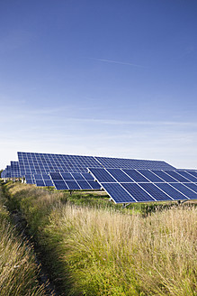Germany, North Rhine-Westphalia, Solar panels at solar energy park near Saerbeck - MSF002825