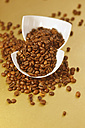 Germany, Coffeebeans in broken cup, close up - JTF000236