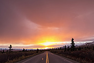 USA, Alaska, Denali park road at sunset - FOF004537