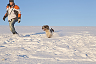 Germany, Bavaria, English Springer Spaniel and dog owner playing in snow - MAEF005444