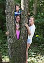 Austria, Portrait of friends standing behind tree trunk, smiling - WWF002734
