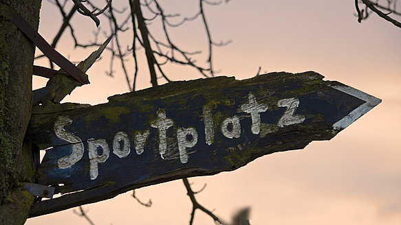Germany, Rhineland Palatinate, Withered sign on tree at dusk, close up - MHF000063