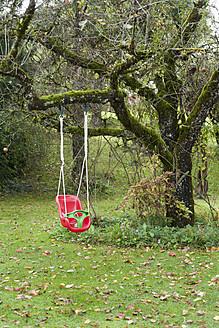 Germany, Childrens swing in garden - TC003157