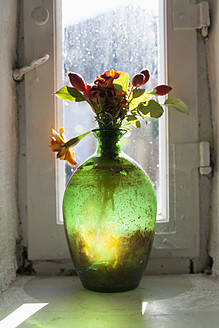 Germany, Flowers in old vase at window of an farmhouse - TC003179
