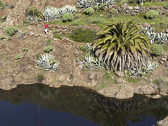 Spain, La Gomera, Mature woman hiking through Barranco de Charco Hondo - SIE003163