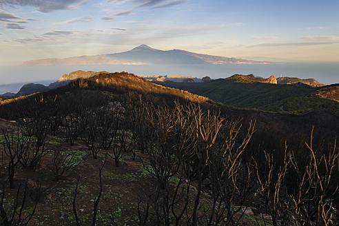 Spain, La Gomera, View of Alto de Garajonay mountain, Tenerife in background - SIE003157