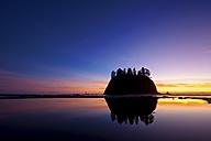 USA, Washington, View of Second Beach - SMA000064