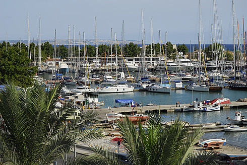 Spain, Mallorca, Palma, Sailing boats and palm trees at harbour - MIZ000144