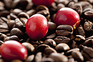Fresh and roasted coffee beans, close up - CSF016244