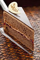 Slice of Sachertorte on cake server, close up - CSF016286