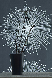 Blackthorn in glass with fibre optic in background in background, close up - ASF004787