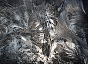Austria, Window covered with  Ice crystal, close up - WWF002625