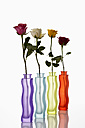 Variety of flower vases with roses on white background, close up - CSF016541